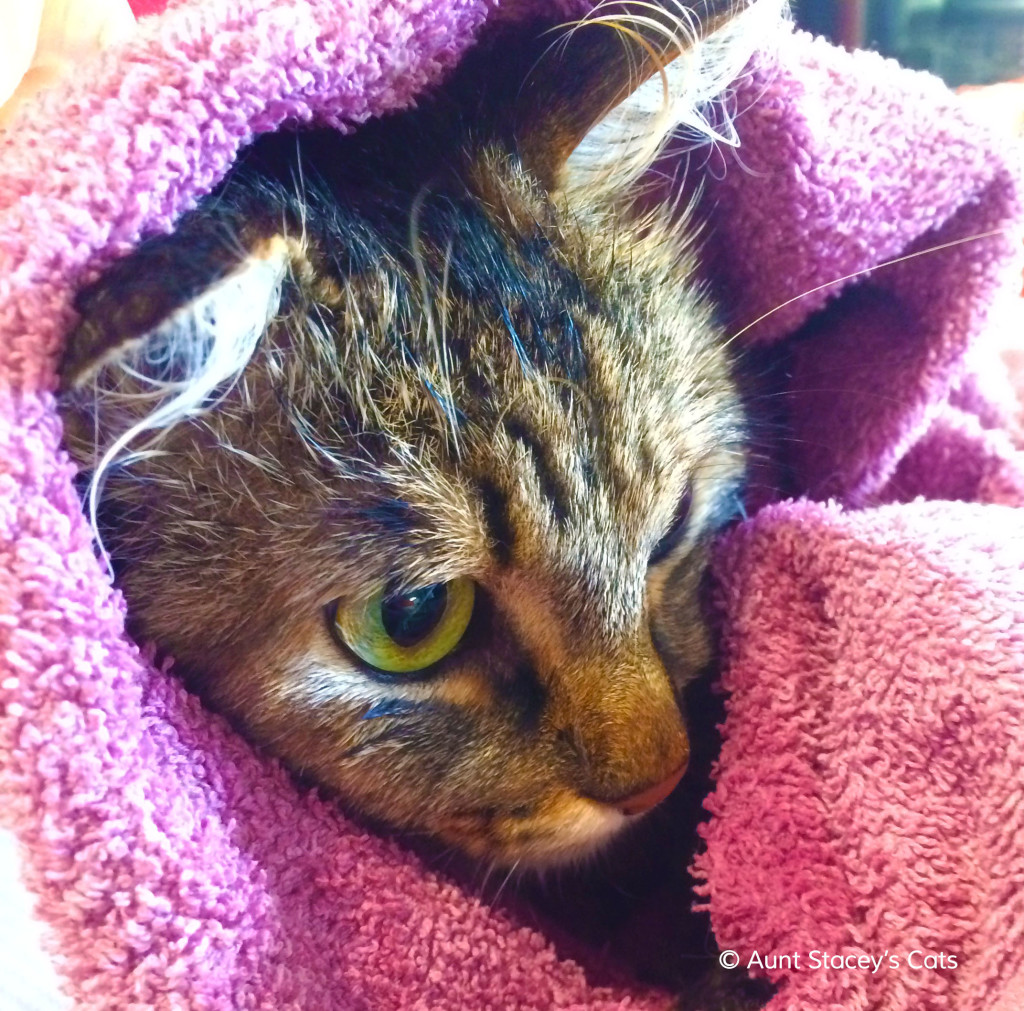 Kai wrapped in a towel after her bath